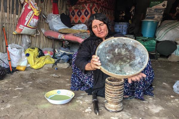 رستوران های نزدیک عشایر قشقایی شیراز