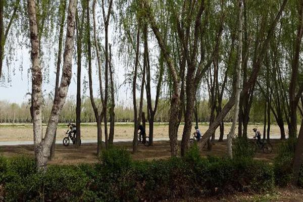 تاریخچه-پارک-جنگلی-ناژوان اصفهان