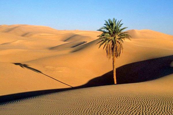 درباره-کویر-مصر اصفهان