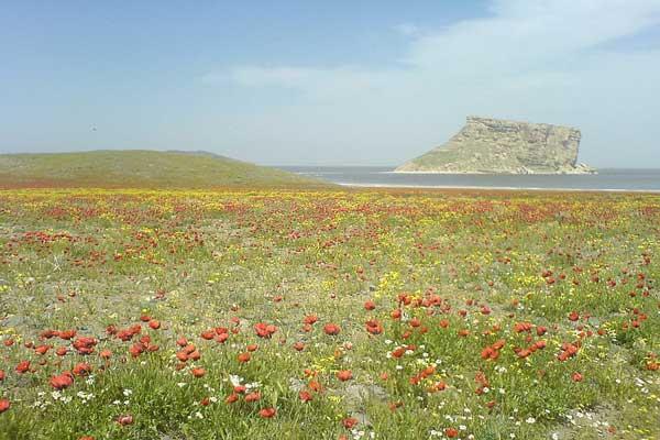 آشنایی با دریاچه ارومیه