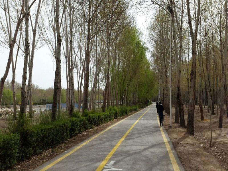 پارک-جنگلی-ناژوان اصفهان