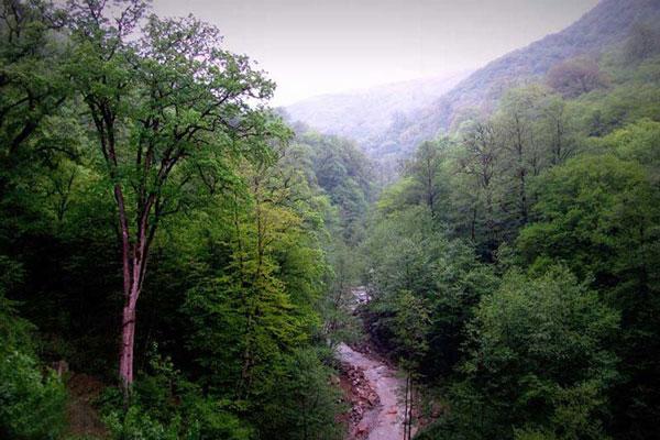 آشنایی با وضعیت جغرافیایی جنگلهای هیرکانی