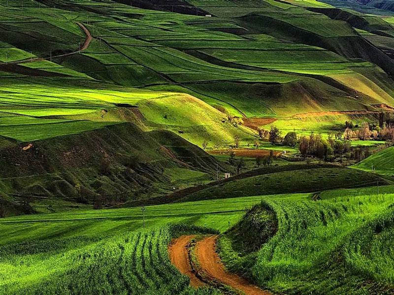 جواهرده سرزمین مراتع و گلها